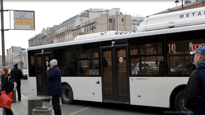 В Петербурге начинают работать ночные автобусы