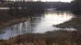 В реке Подмосковья нашли труп мужчины без головы и кисте...