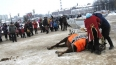 В Иваново под Дедом Морозом издохла лошадь