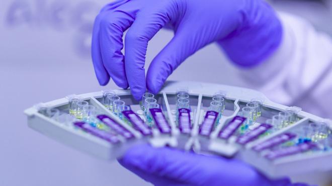 Петербуржцев вне групп риска просят не сдавать анализы на коронавирус