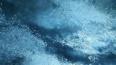 Спасатели МЧС дежурят у водоемов Ленобласти