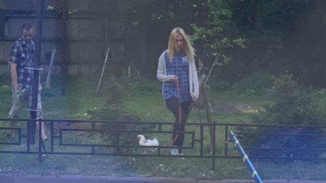 Жительница Васильевского острова ходила в магазин вместе с курицей
