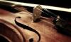 Неизвестные похитили у петербуржца скрипку за 3 тыс. евро