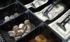 В Ленобласти из отделения почты России неизвестный вынес 130 000 рублей