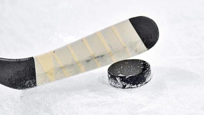 Пенсионер попал в реанимацию после игры в хоккей в Петербурге