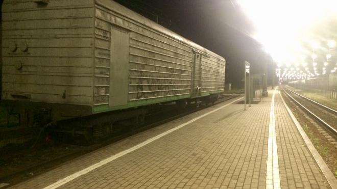 Из Петербурга в Эстонию пытались вывезти 500 коробок с сигаретами