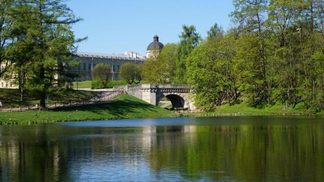 Со 2 июля вход в Гатчинский парк станет бесплатным