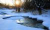 В Кронштадте дети плавали на льдине на Финском заливе