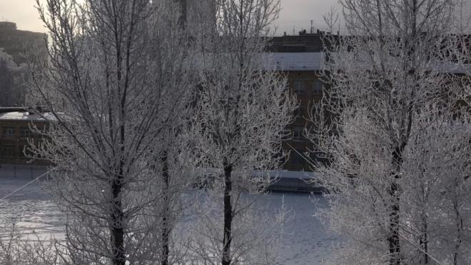 Дворники в Петербурге начали работать в усиленном режиме из-за метели