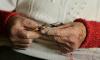 В Гатчинском районе бабушку ограбил собственный внук