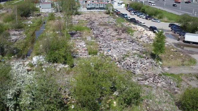 В администрации уточнили сроки начала уборки мусорной свалки в Купчино