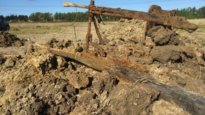 Под Петербургом на месте боев нашли останки двух красноармейцев