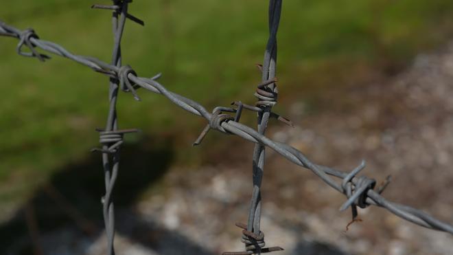 Мединский поддержал создание мемориала жертвам детского концлагеря в Ленобласти