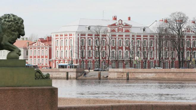 СПбГУ возвращается на дистанционное обучение из-за коронавируса