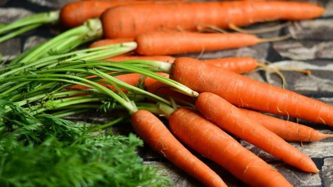 За год в Петербурге изъяли 131 тонну плодоовощной продукции