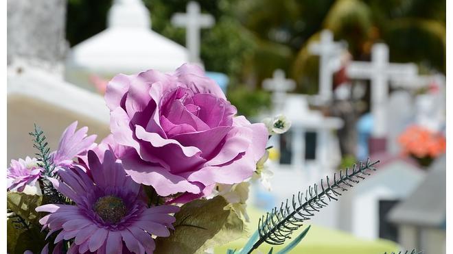 Похоронная компания оспорит в суде право зарабатывать на кладбищах Колпинского района
