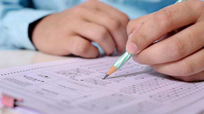В Выборгском районе 11 выпускников получили 100 баллов по ЕГЭ