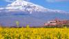 Армения заняла лидирующую строчку в рейтинге популярных ...