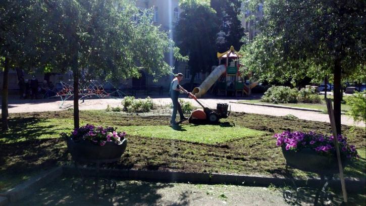 В Саду Валентина Пикуля продолжаются работы по благоустройству