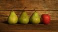 Россия с 10 августа приостановит ввоз яблок и груш ...