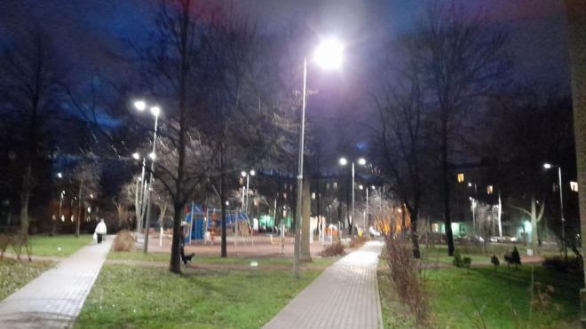 В Петербурге будет разработан проект реконструкции освещения парка Красное Село