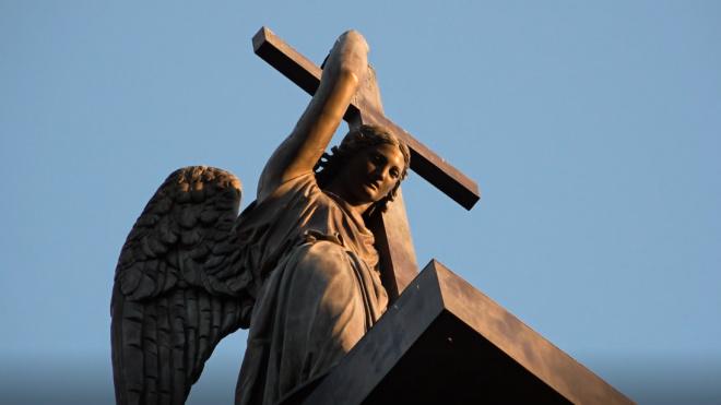 Богослужения в храмах Петербурга из-за коронавируса пройдут без горожан