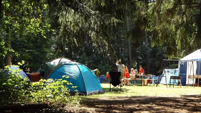 Детские лагеря в Ленобласти заработают со 2 июля