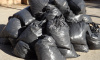 Мешки с кусками человеческого тела нашли на Канонерском острове
