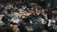 Пожарные в Приозерске вывели 40 человек из горящей ...