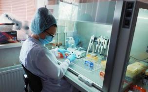 Роспотребнадзор назвал различия между гриппом и коронавирусом
