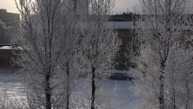 Теплый атмосферный фронт принесет в Петербург метель