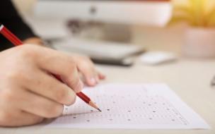 Выборгские школьники сдали ЕГЭ по химии и обществознанию