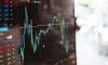 На петербургской бирже зафиксировали значительный приток частных инвесторов в 2019 году