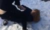 В Петербурге около 30 школьников пришли посмотреть как избивают девочку