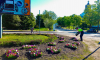 Приморскую улицу Выборга украсили новые клумбы