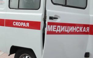 Петербургские студенты привезли коронавирус со сборов