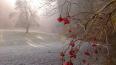 В Новый Год в Петербурге будет гололед и мокрый снег