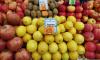 В УФАС заявили о невозможности сдерживания цен на имбирь и лимоны