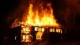 В Лужском районе во время пожара сгорел человек