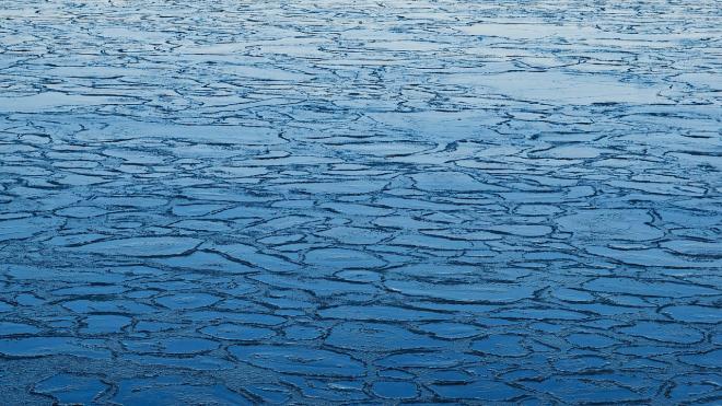 Петербуржцы с детьми вышли на подтаявший лед на Невской губе