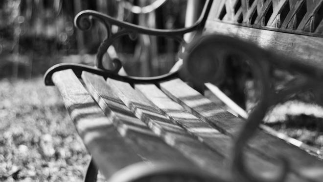 Молодая женщина отбилась от насильника в Шкиперском саду