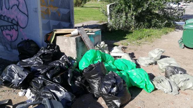 Активисты собрали 33 мешка мусора в результате уборки на Васильевском острове