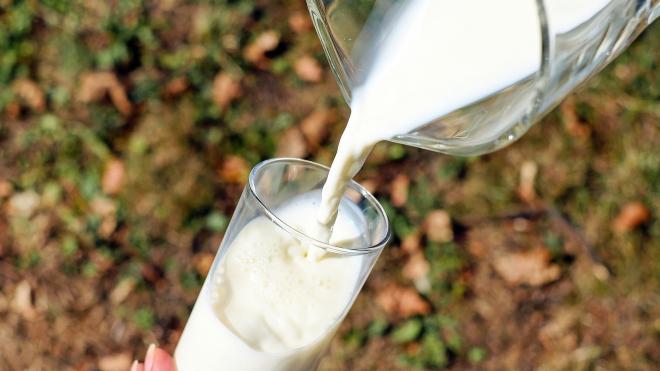 В импортном молоке и масле обнаружили запрещенные вещества