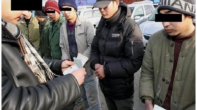 Петербургская компания незаконно легализовала тысячу мигрантов