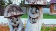 Череп с одним зубом нашел петербуржец в грибном лесу