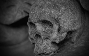 На Мурманском шоссе откопали кости 10-летнего ребенка