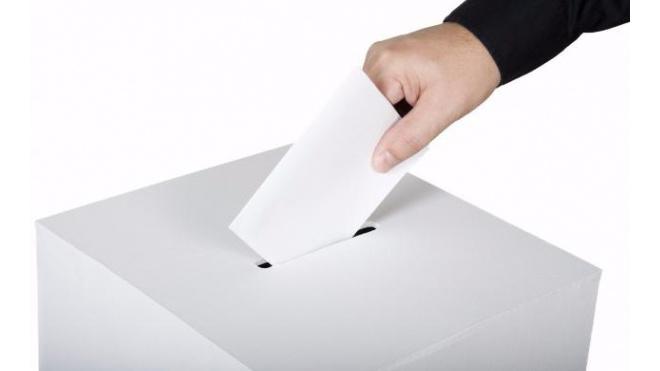 Бортко, Тихонова, Амосов: что скрыли участники «подкидных» выборов губернатора