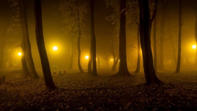 В Брестском парке появилось новое наружное освещение
