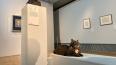 В Эрмитаже объявили о поиске новых хозяев для музейных ...