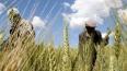 Эфиопский фермер утверждает, что ему 160 лет